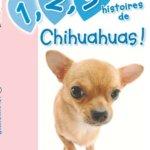 12-3-histoires-de-Chihuahuas-0