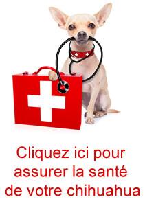 assurance santé chihuahua